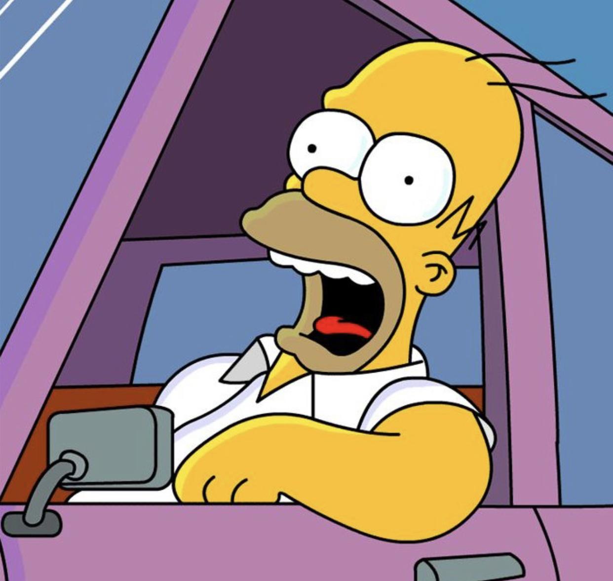 Homer Road Trip